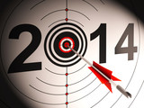 2014 Projection Target Shows Successful Future