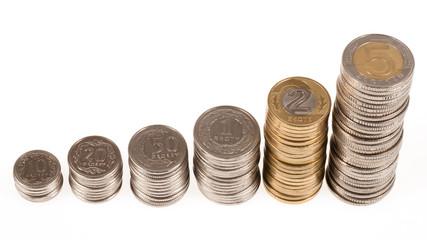 Money Polish Zloty