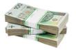 Bills Money Polish Zloty