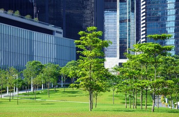 Green area and trees in CBD