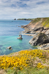 Welsh coast scene towards Skomer Island Pembrokeshire