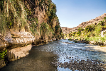 The creek in valley Wadi Hasa in Jordan