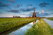 wildflowers and dutch windmill at sunrise