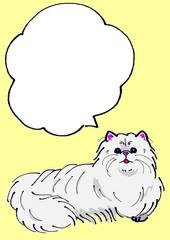 ペルシャ猫のメッセージカード