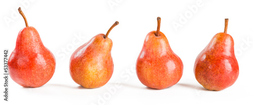 four red pears on white