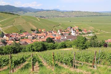 Villages et vignoble d'Alsace