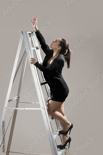 Business ladder of success