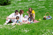 Company of friends with children having fun on a picnic