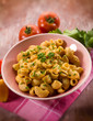 pasta  with pepper cream sauce, selective focus