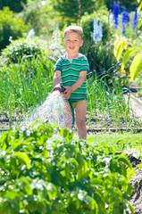 Kleiner Junhge wässert Kartoffelpflanzen