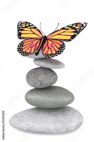 Fototapeten,schmetterling,kurort,steine,balance