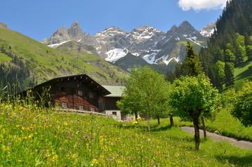 Bauernhaus in den Bergen