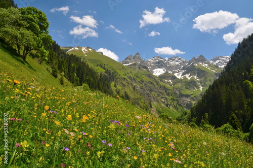 canvas print picture Berge im Frühling