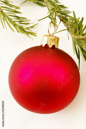 bauble fir