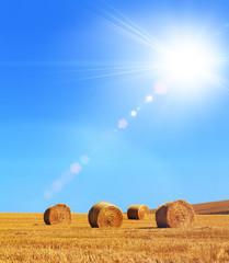 sunny hay bales