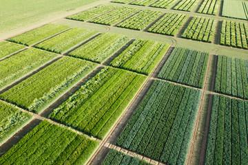 agriculture vue du ciel