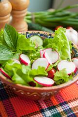 Vegetables salad with radish