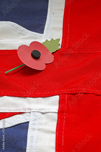 In de dag Poppy poppy on union jack