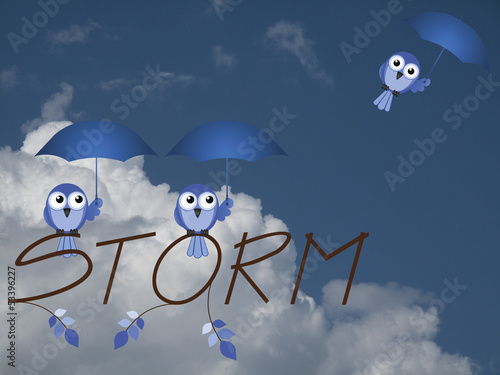 Birds with umbrellas trying to shelter from the storm
