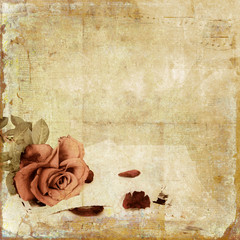 Vintage  shabby background with rose