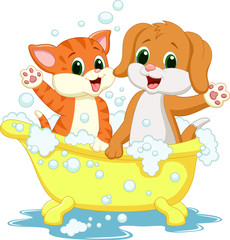 Cute cat and dog bathing time
