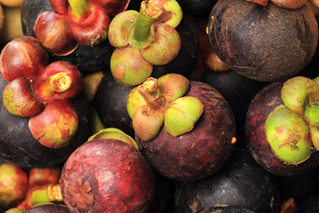 Group of Mangosteen