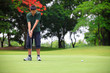 Golf teenager boy player green putting