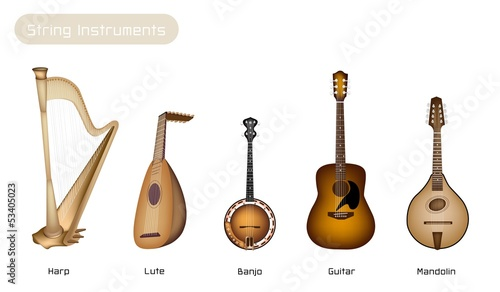Five Musical Instrument Strings on White Background
