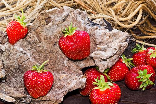 Erdbeeren auf Holz mit Wurzel und Schnur