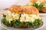 Egg Salad Sandwich Closeup