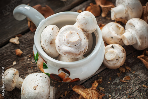 Harvest of White Mushrooms on the wooden table