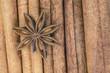 Anís estrellado sobre palos de canela en rama.
