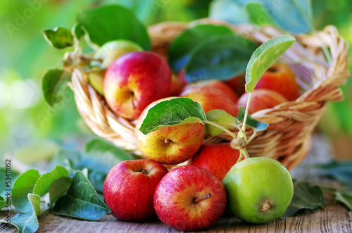 .Basket of apples on table