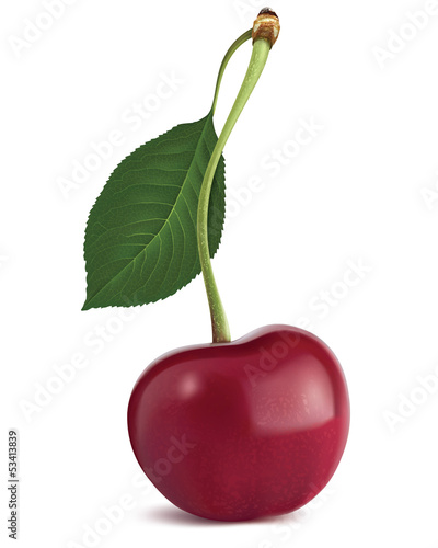 Cherry with leaf. Vector illustration