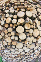 Woodshed with logs cut and perfectly aligned for heating during