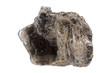 Muscovite (mica) - 53423061