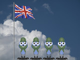 UK bird soldiers on parade