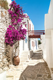 Fototapety Traditional greek alley on Sifnos island, Greece
