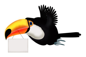 Flying toucan with plate