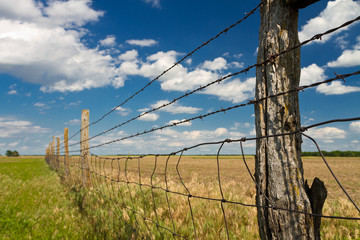 barbed wire fence in Kansas pasture field