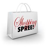 Shopping Spree Bag Marketplace Store Spending Money poster