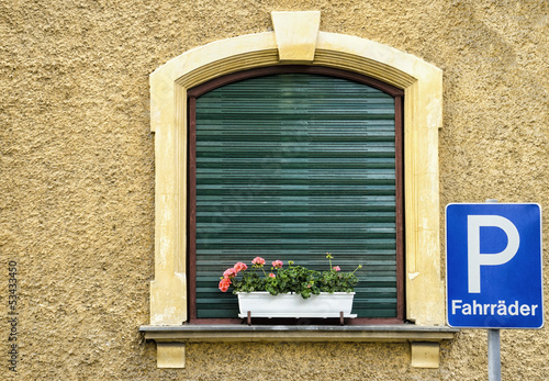 European Window with Flowers