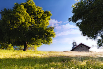 Chapel next to big tree on top of a grass hill - Color