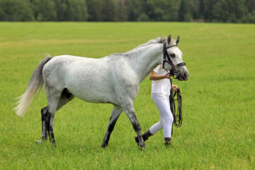 Girl leading her horse