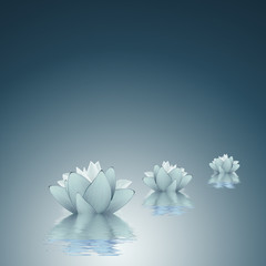 Lotus - Purity background