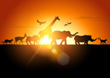 Fototapety Sunset Safari