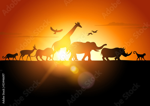 Fototapety, obrazy : Sunset Safari