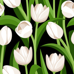 Seamless pattern with white tulips on black. Vector illustration