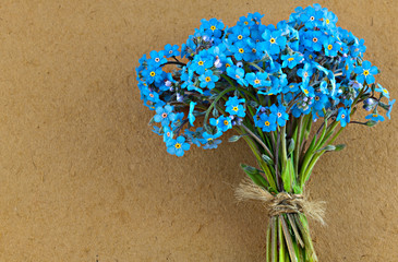 Bunch of blue forget me not flower