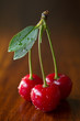 Sour cherries with a leaf